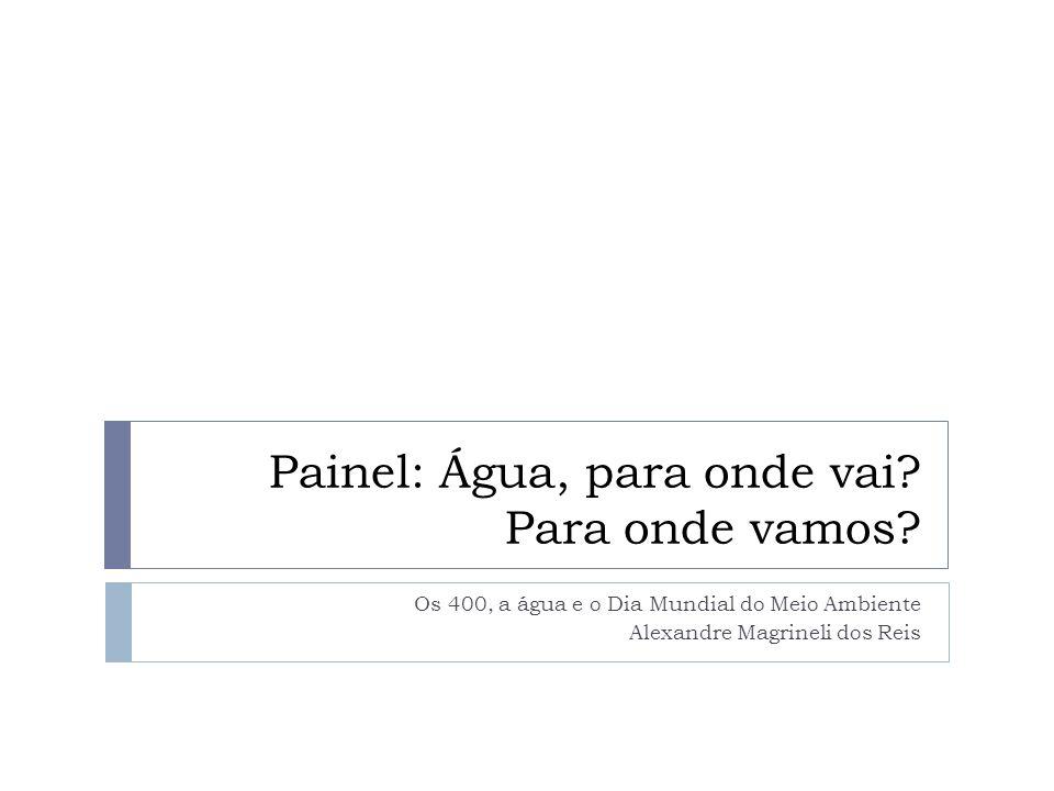Painel: Água, para onde vai? Para onde vamos? Os 400, a água e o Dia Mundial do Meio Ambiente Alexandre Magrineli dos Reis