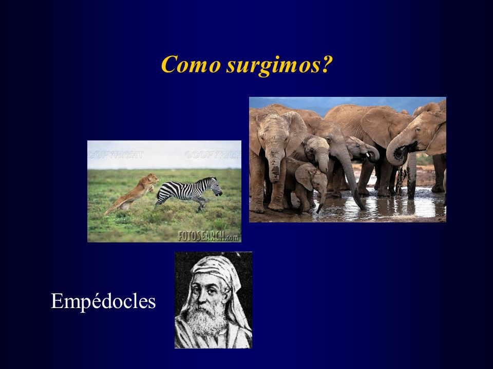 Como surgimos? Empédocles