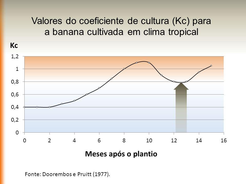 Fonte: Doorembos e Pruitt (1977).