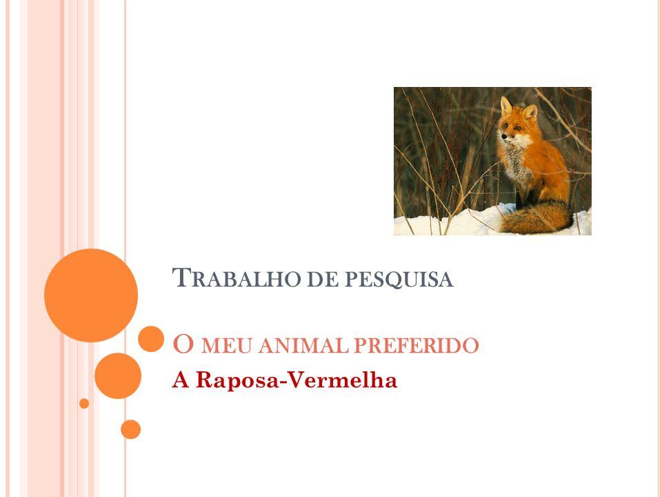 T RABALHO DE PESQUISA O MEU ANIMAL PREFERIDO A Raposa-Vermelha