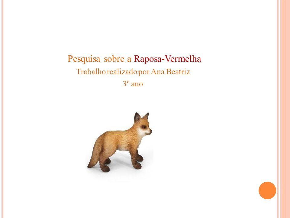 Pesquisa sobre a Raposa-Vermelha Trabalho realizado por Ana Beatriz 3º ano