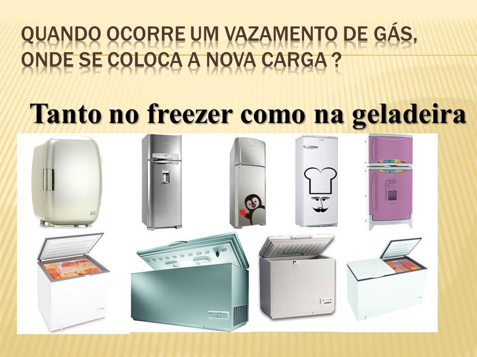 Tanto no freezer como na geladeira
