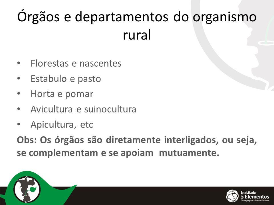 Órgãos e departamentos do organismo rural Florestas e nascentes Estabulo e pasto Horta e pomar Avicultura e suinocultura Apicultura, etc Obs: Os órgão