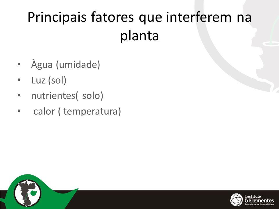 Principais fatores que interferem na planta Àgua (umidade) Luz (sol) nutrientes( solo) calor ( temperatura)