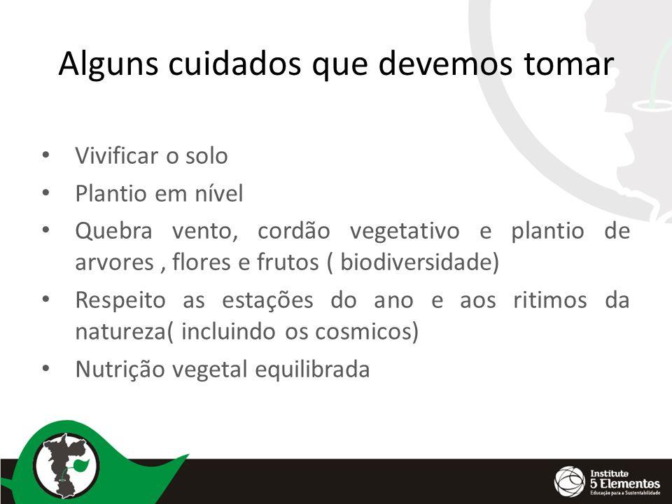Alguns cuidados que devemos tomar Vivificar o solo Plantio em nível Quebra vento, cordão vegetativo e plantio de arvores, flores e frutos ( biodiversi