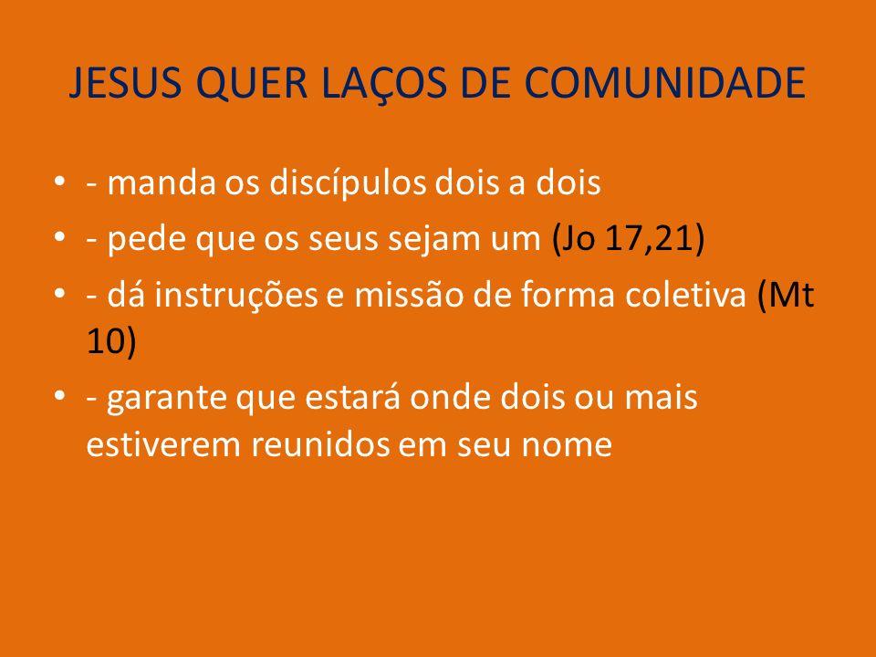 JESUS QUER LAÇOS DE COMUNIDADE - manda os discípulos dois a dois - pede que os seus sejam um (Jo 17,21) - dá instruções e missão de forma coletiva (Mt