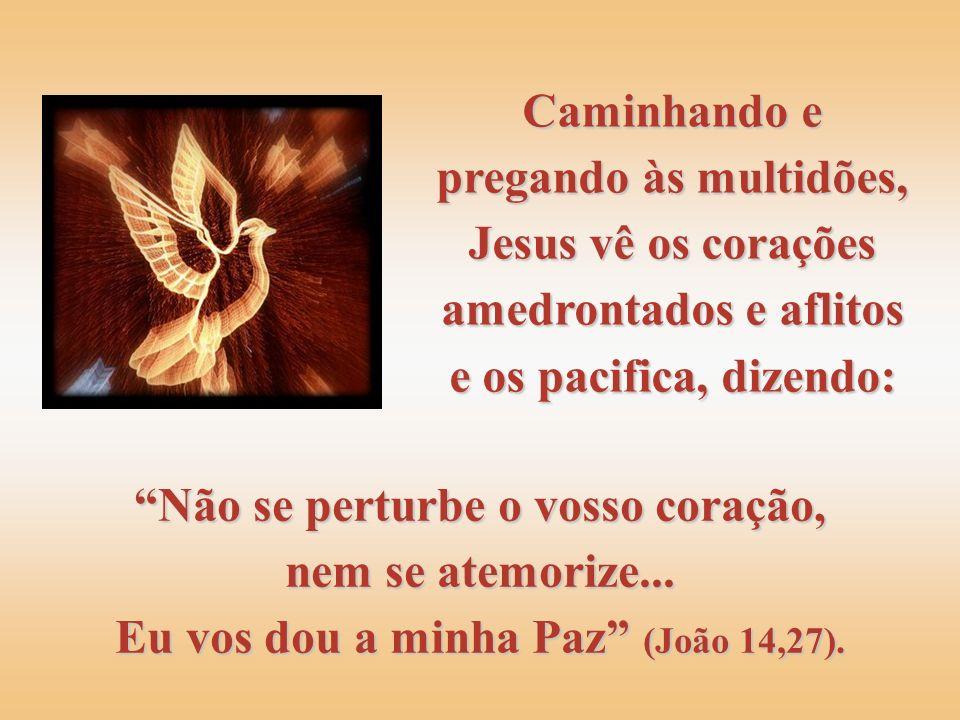 Caminhando e pregando às multidões, Jesus vê os corações amedrontados e aflitos e os pacifica, dizendo: Não se perturbe o vosso coração, nem se atemorize...