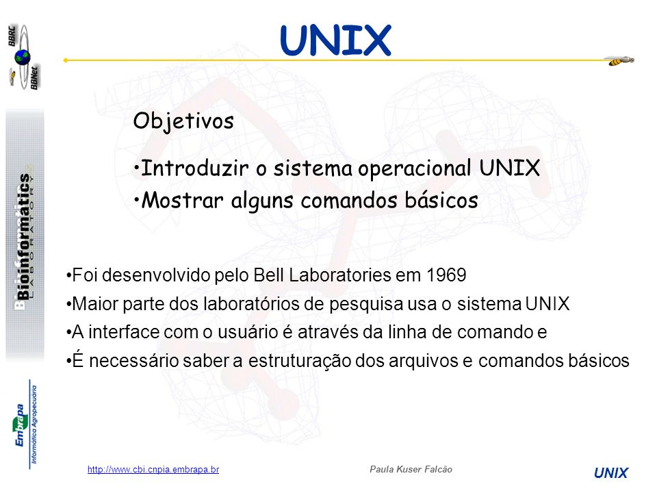 Paula Kuser Falcão UNIX http://www.cbi.cnpia.embrapa.br Convenções tipográficas negrito: comandos que devem ser teclados como estão Palavras entre [colchetes]: indicam teclas que devem ser apertadas.