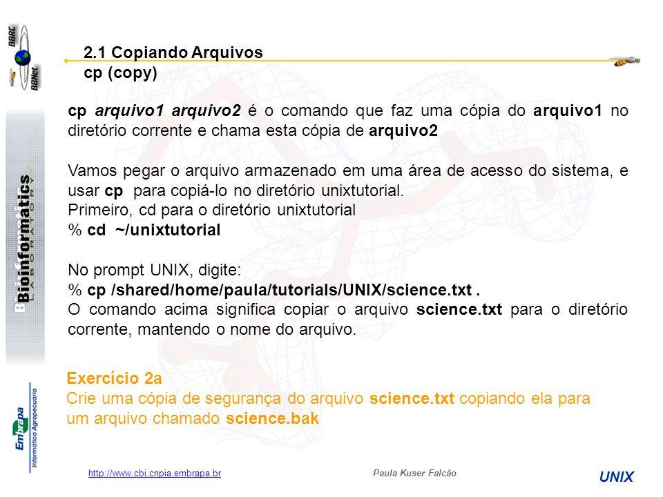 Paula Kuser Falcão UNIX http://www.cbi.cnpia.embrapa.br cp arquivo1 arquivo2 é o comando que faz uma cópia do arquivo1 no diretório corrente e chama e