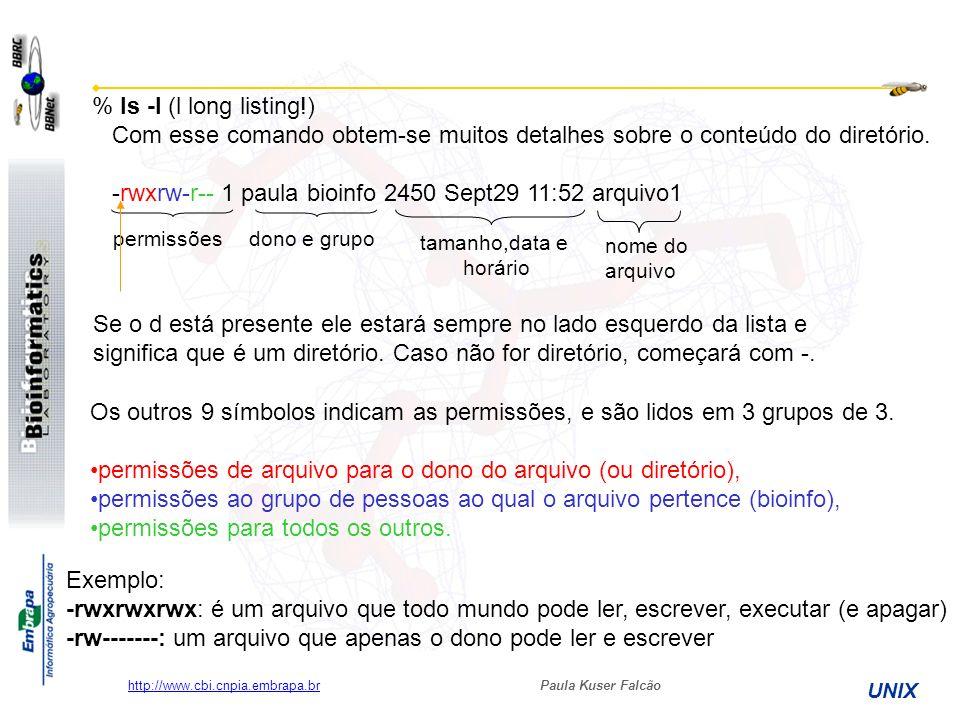 Paula Kuser Falcão UNIX http://www.cbi.cnpia.embrapa.br % ls -l (l long listing!) Com esse comando obtem-se muitos detalhes sobre o conteúdo do diretó