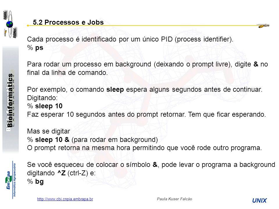 Paula Kuser Falcão UNIX http://www.cbi.cnpia.embrapa.br 5.2 Processos e Jobs Cada processo é identificado por um único PID (process identifier). % ps