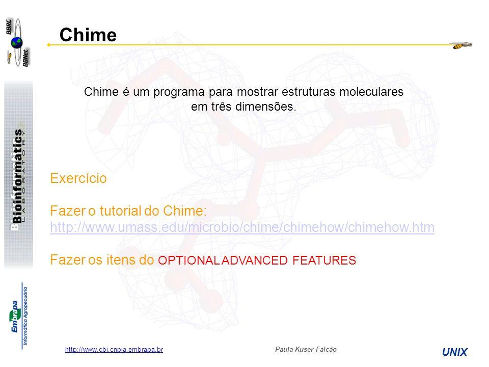 Paula Kuser Falcão UNIX http://www.cbi.cnpia.embrapa.br Chime Chime é um programa para mostrar estruturas moleculares em três dimensões. Exercício Faz