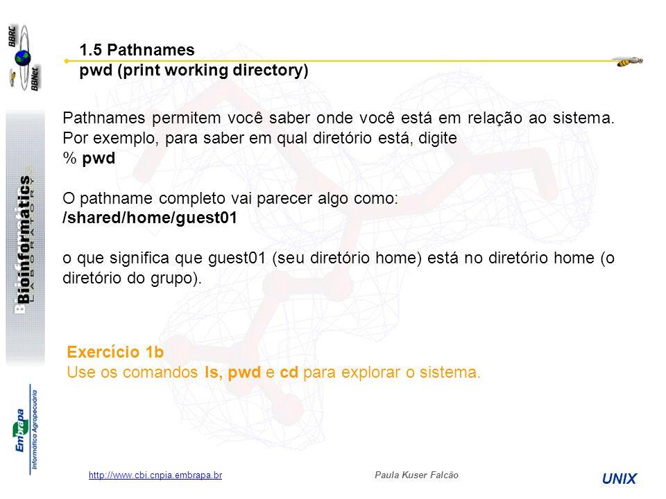 Paula Kuser Falcão UNIX http://www.cbi.cnpia.embrapa.br % ls unixtutorial/backup 1.6 Mais sobre diretórios home e pathnames Entenda pathnames Primeiro digite cd para voltar para o diretório home, então digite: % ls unixtutorial para listar o conteúdo do diretório Agora digite: % ls backup Você verá a mensagem: backup: No such file or directory Porque backup não está no seu diretório corrente.