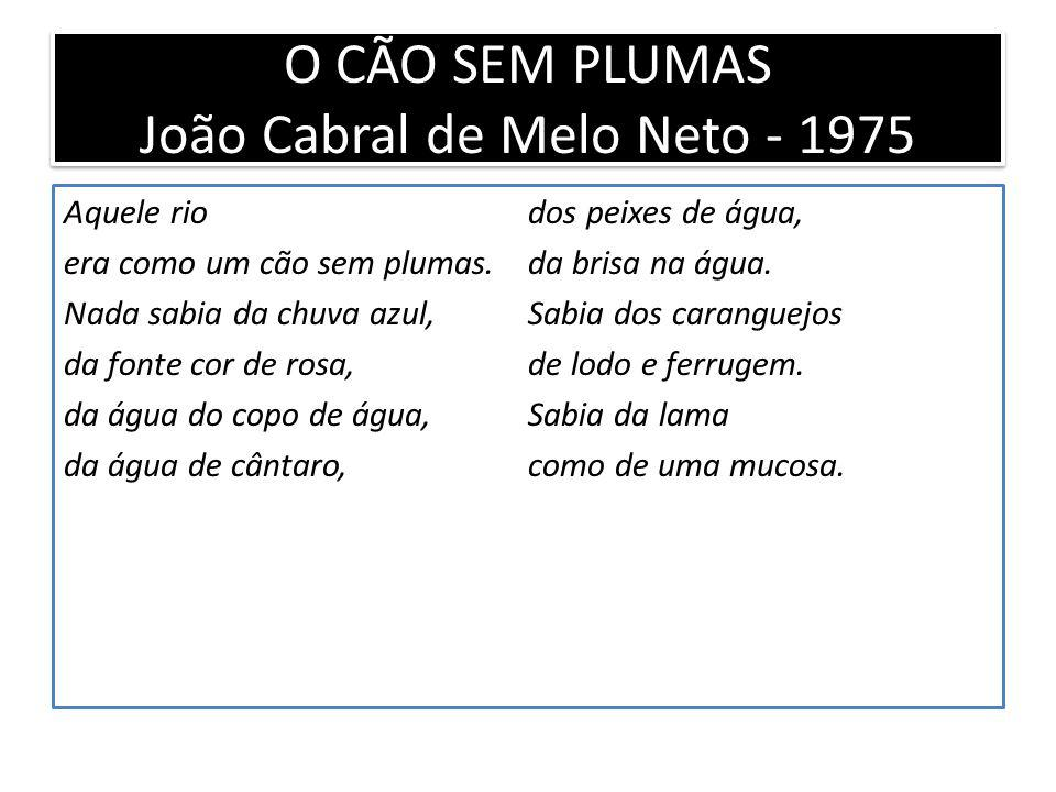 O CÃO SEM PLUMAS João Cabral de Melo Neto - 1975 Aquele rio era como um cão sem plumas.