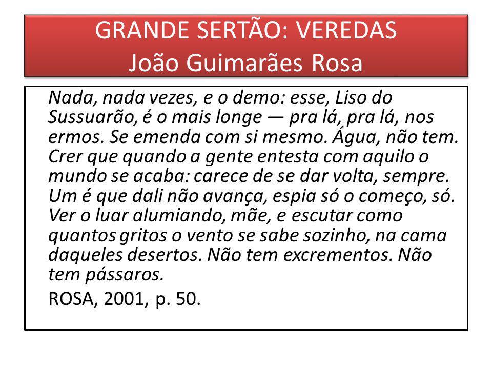 GRANDE SERTÃO: VEREDAS João Guimarães Rosa Nada, nada vezes, e o demo: esse, Liso do Sussuarão, é o mais longe pra lá, pra lá, nos ermos.