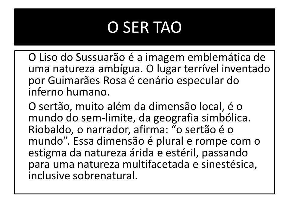 O SER TAO O Liso do Sussuarão é a imagem emblemática de uma natureza ambígua.