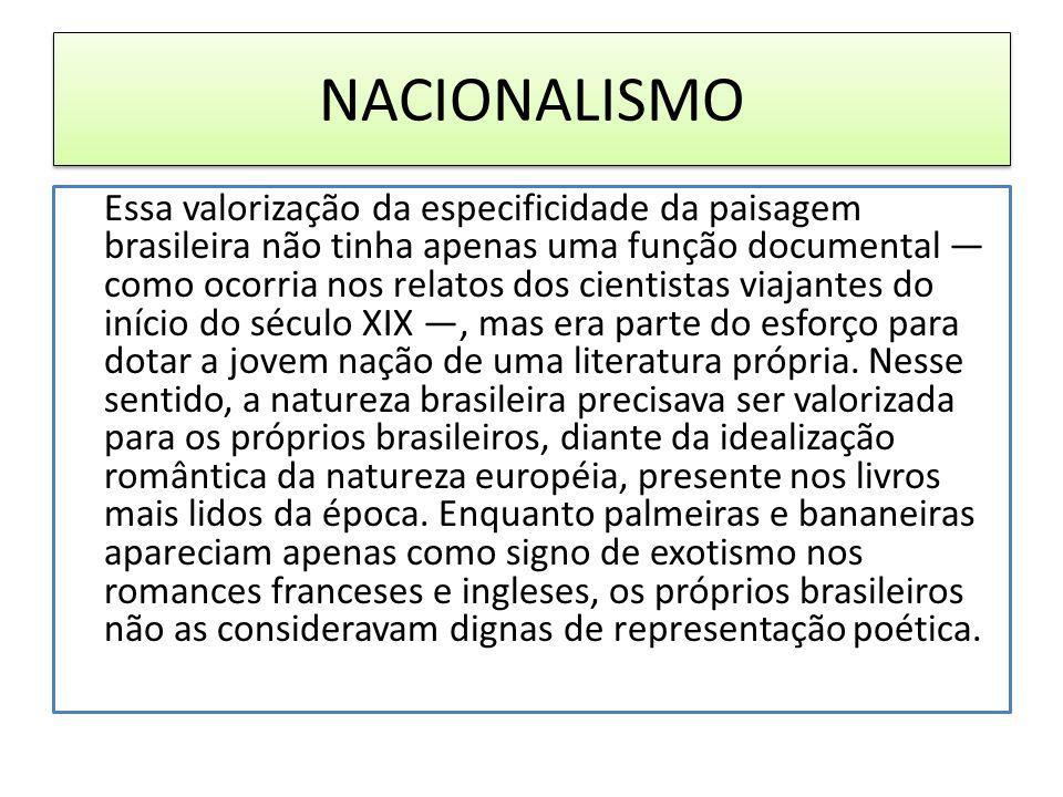 NACIONALISMO Essa valorização da especificidade da paisagem brasileira não tinha apenas uma função documental como ocorria nos relatos dos cientistas viajantes do início do século XIX, mas era parte do esforço para dotar a jovem nação de uma literatura própria.
