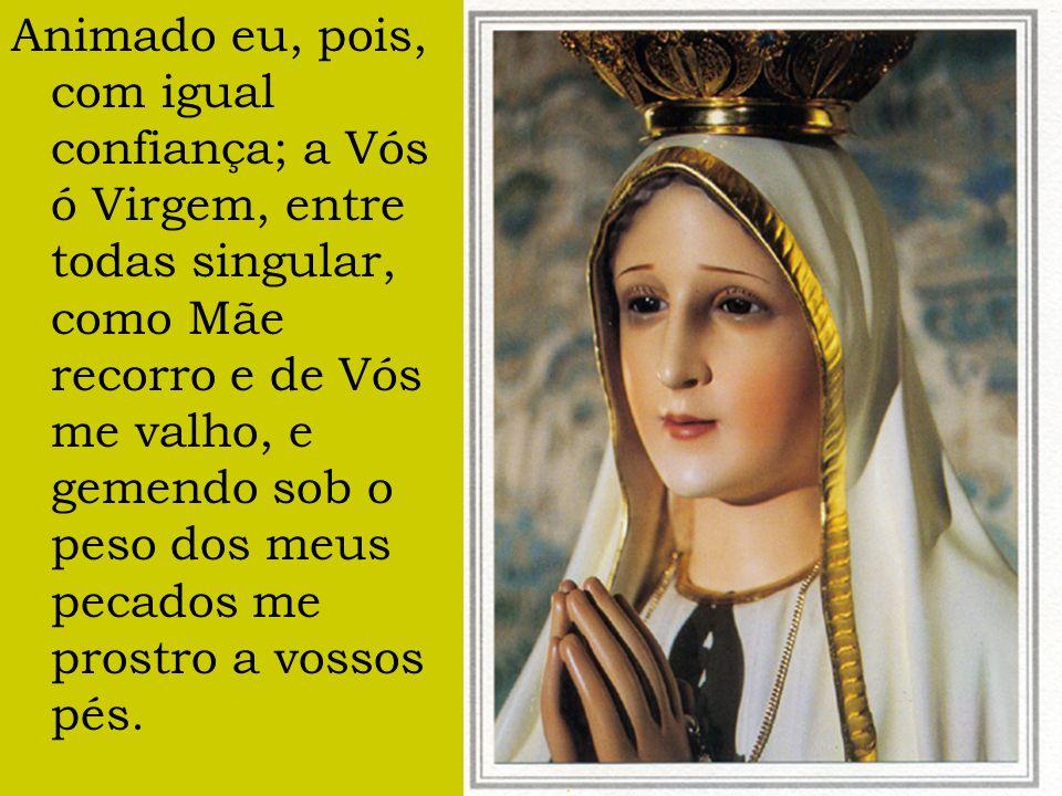 Animado eu, pois, com igual confiança; a Vós ó Virgem, entre todas singular, como Mãe recorro e de Vós me valho, e gemendo sob o peso dos meus pecados me prostro a vossos pés.
