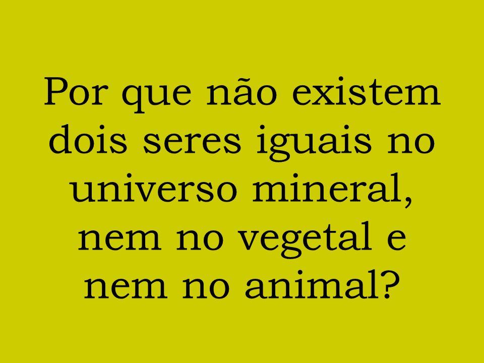 Por que não existem dois seres iguais no universo mineral, nem no vegetal e nem no animal?