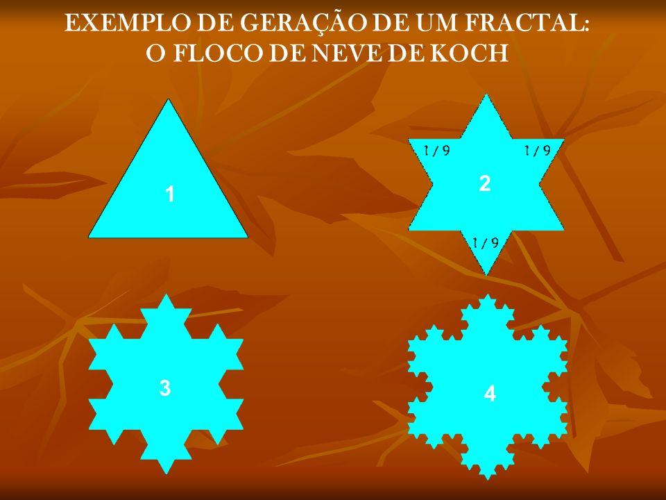 EXEMPLO DE GERAÇÃO DE UM FRACTAL: O FLOCO DE NEVE DE KOCH 1 2 3 4