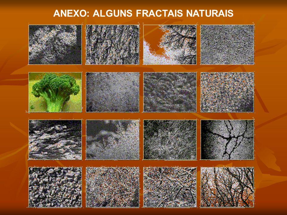 ANEXO: ALGUNS FRACTAIS NATURAIS
