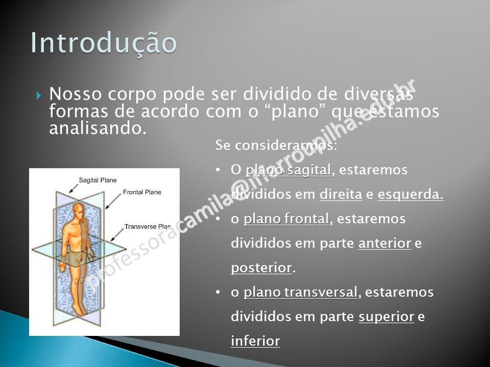 professoracamila@iffarroupilha.edu.br Nosso corpo pode ser dividido de diversas formas de acordo com o plano que estamos analisando.