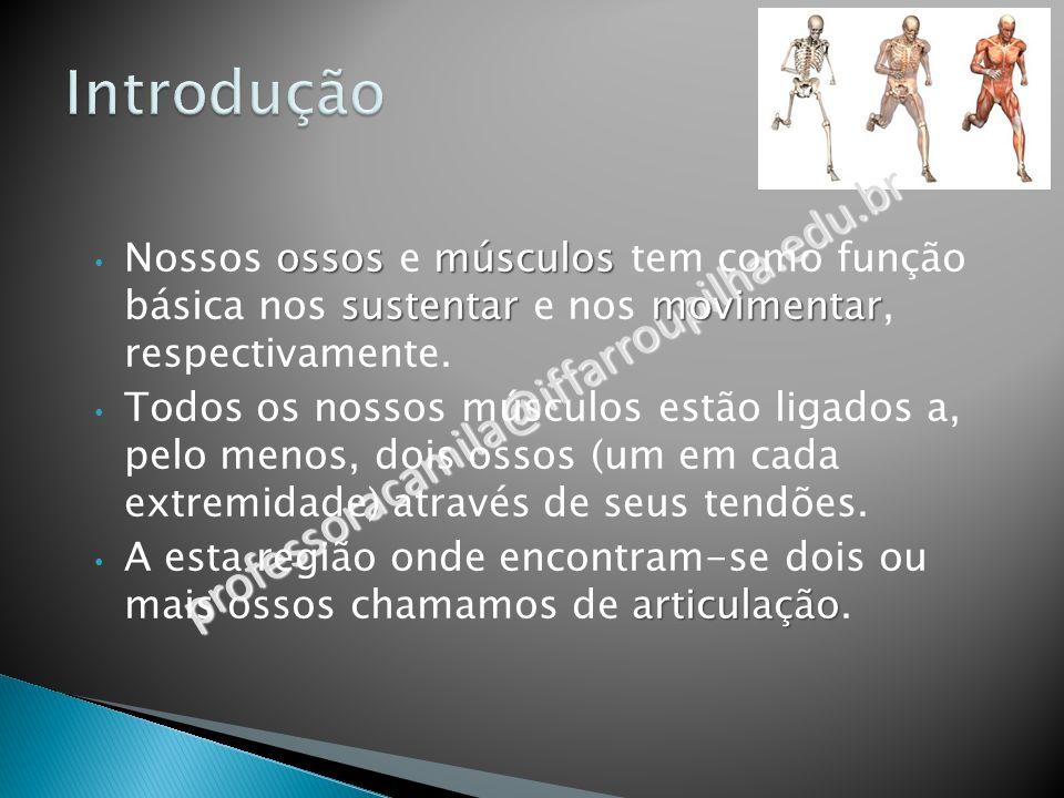 tórax - vista anterior professoracamila@iffarroupilha.edu.br