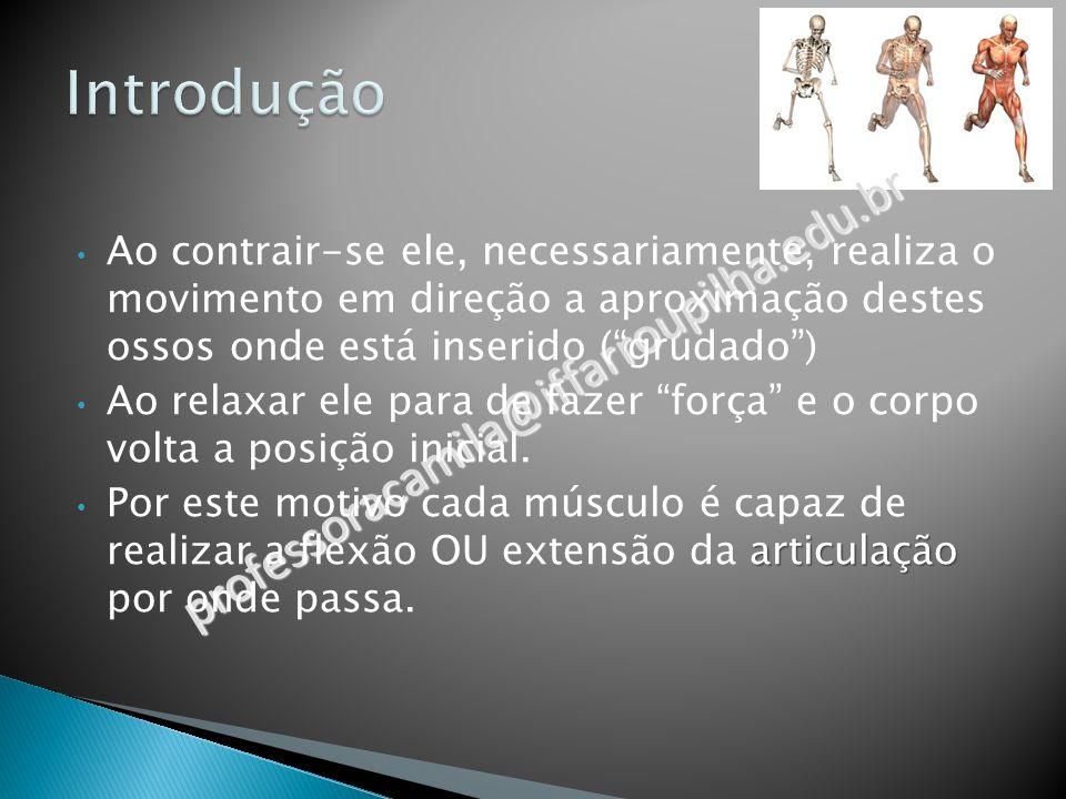 professoracamila@iffarroupilha.edu.br Por exemplo: O BÍCEPS insere-se (está colado) no Úmero (osso do braço), na Ulna e no Rádio (ossos do antebraço), passando pelo cotovelo, por isso é capaz (e tem como função principal) e FLEXÃO DO COTOVELO.