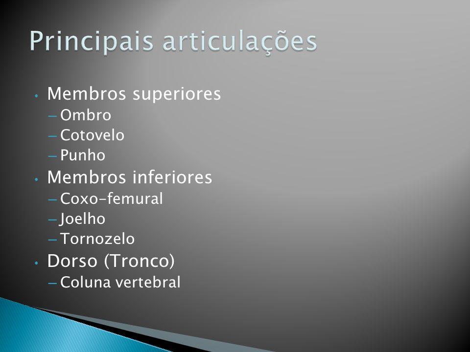 Coxo-femural direita - vista anterior professoracamila@iffarroupilha.edu.br
