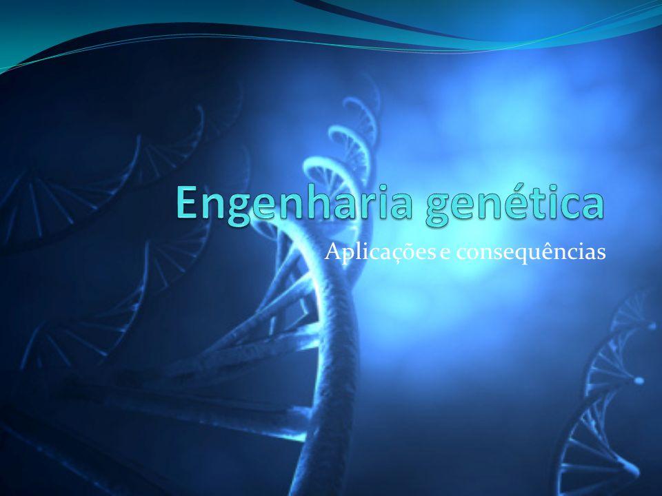 Engenharia genética Ramo da biotecnologia dedicado à manipulação dos genes de um organismo, geralmente fora do seu processo reprodutivo.
