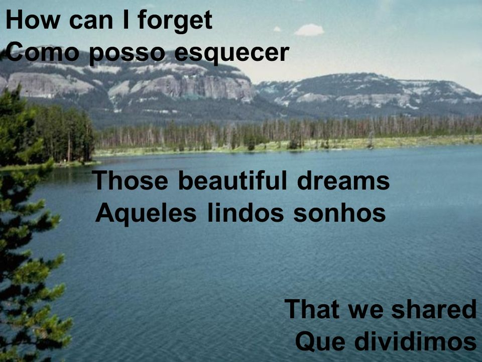 How can I forget Como posso esquecer Those beautiful dreams Aqueles lindos sonhos That we shared Que dividimos