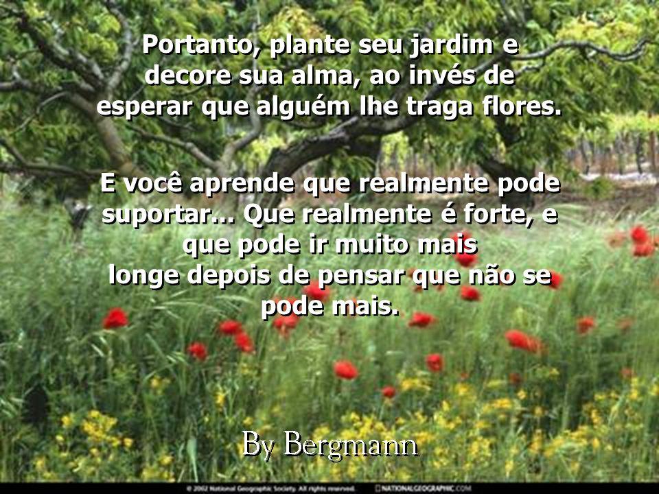 Portanto, plante seu jardim e decore sua alma, ao invés de esperar que alguém lhe traga flores.