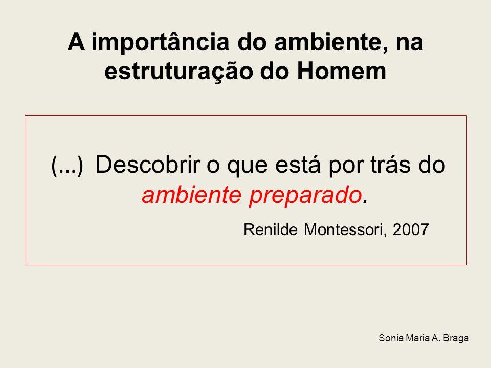 A importância do ambiente, na estruturação do Homem (...) Descobrir o que está por trás do ambiente preparado. Renilde Montessori, 2007 Sonia Maria A.