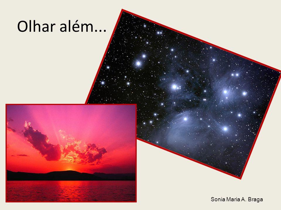 Olhar além... Sonia Maria A. Braga