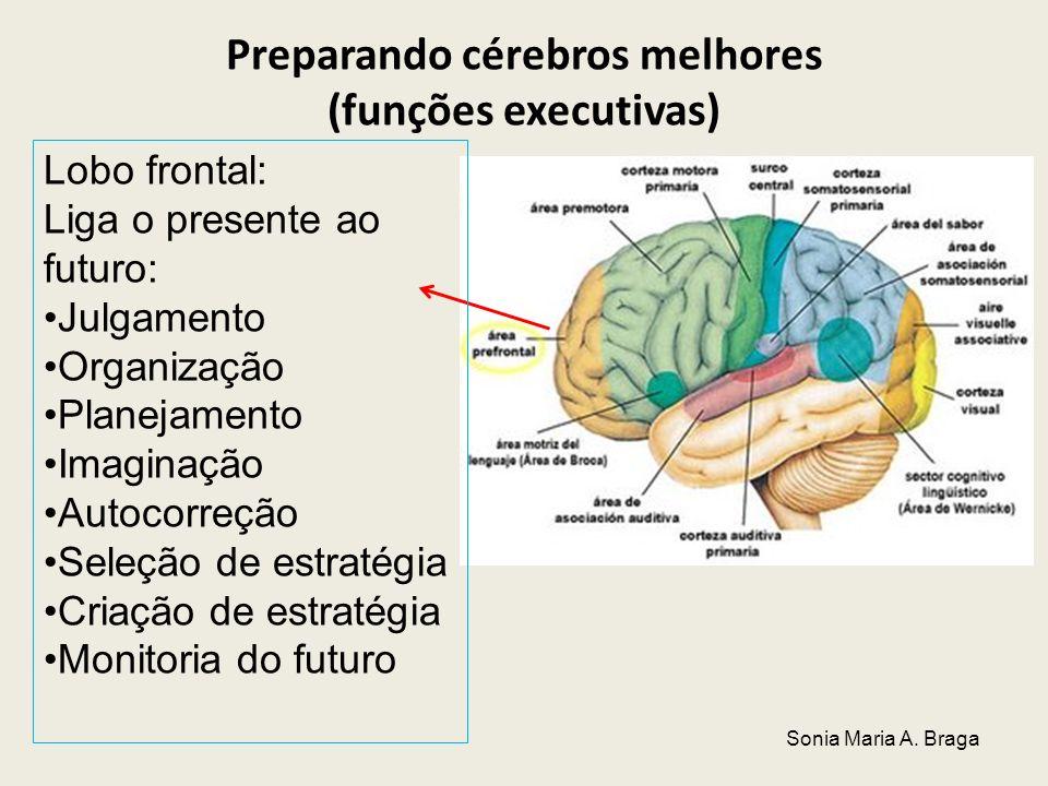 Preparando cérebros melhores (funções executivas) Lobo frontal: Liga o presente ao futuro: Julgamento Organização Planejamento Imaginação Autocorreção