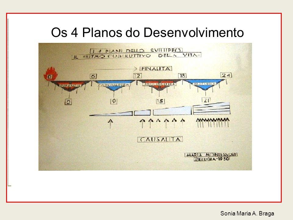 Os 4 Planos do Desenvolvimento Sonia Maria A. Braga