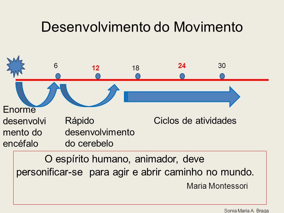Desenvolvimento do Movimento 6 1218 24 30 Enorme desenvolvi mento do encéfalo Rápido desenvolvimento do cerebelo Ciclos de atividades O espírito human