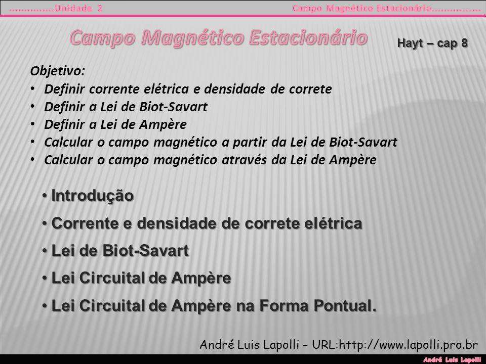 Objetivo: Definir corrente elétrica e densidade de correte Definir a Lei de Biot-Savart Definir a Lei de Ampère Calcular o campo magnético a partir da Lei de Biot-Savart Calcular o campo magnético através da Lei de Ampère IntroduçãoIntrodução Corrente e densidade de correte elétricaCorrente e densidade de correte elétrica Lei de Biot-SavartLei de Biot-Savart Lei Circuital de AmpèreLei Circuital de Ampère Lei Circuital de Ampère na Forma Pontual.Lei Circuital de Ampère na Forma Pontual.