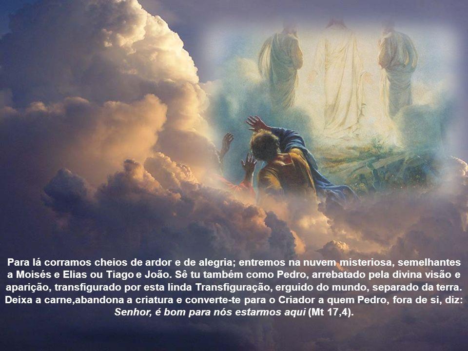 Para lá corramos cheios de ardor e de alegria; entremos na nuvem misteriosa, semelhantes a Moisés e Elias ou Tiago e João.