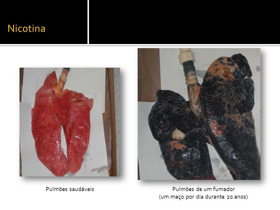 Pulmões saudáveisPulmões de um fumador (um maço por dia durante 20 anos) Nicotina