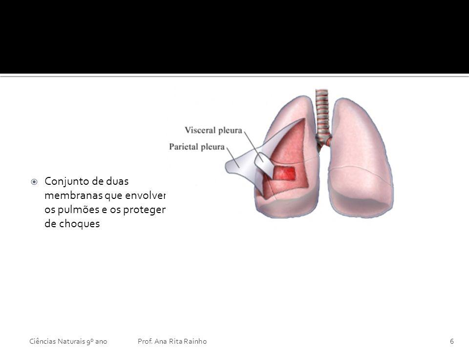 PLEURA Ciências Naturais 9º anoProf. Ana Rita Rainho6 Conjunto de duas membranas que envolvem os pulmões e os protegem de choques