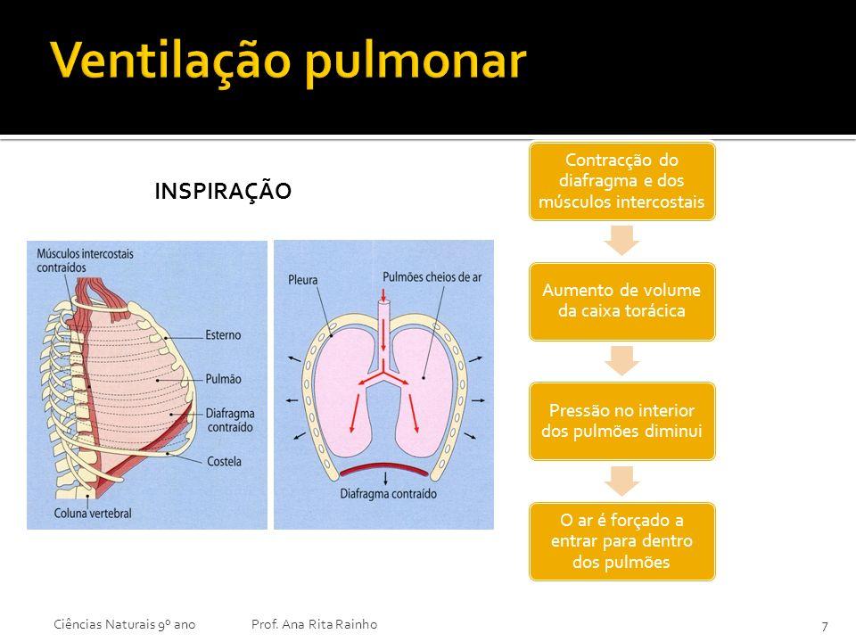 INSPIRAÇÃO Ciências Naturais 9º anoProf. Ana Rita Rainho7 Contracção do diafragma e dos músculos intercostais Aumento de volume da caixa torácica Pres