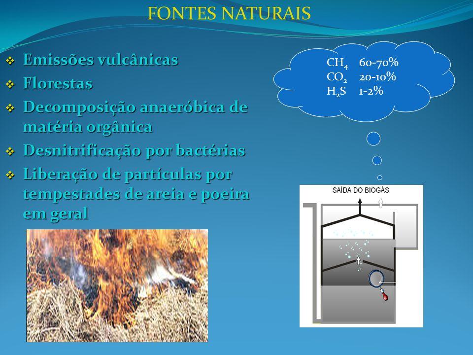 CH 4 60-70% CO 2 20-10% H 2 S 1-2% Emissões vulcânicas Emissões vulcânicas Florestas Florestas Decomposição anaeróbica de matéria orgânica Decomposição anaeróbica de matéria orgânica Desnitrificação por bactérias Desnitrificação por bactérias Liberação de partículas por tempestades de areia e poeira em geral Liberação de partículas por tempestades de areia e poeira em geral FONTES NATURAIS