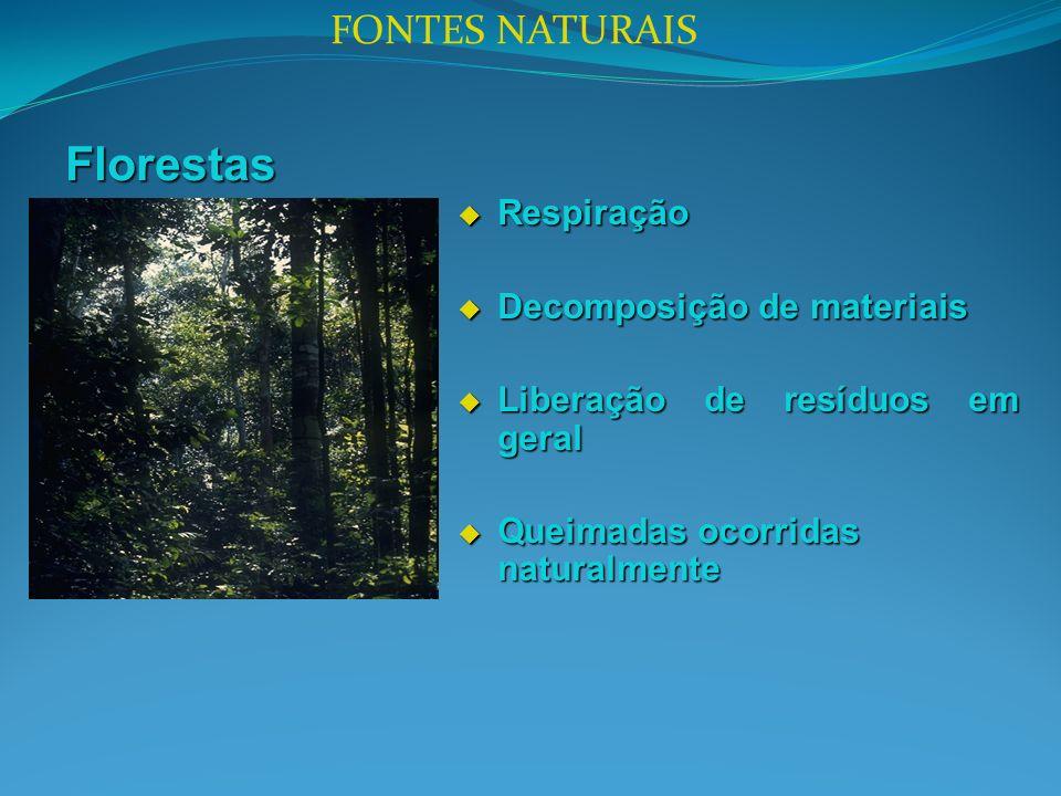 Florestas Respiração Respiração Decomposição de materiais Decomposição de materiais Liberação de resíduos em geral Liberação de resíduos em geral Queimadas ocorridas naturalmente Queimadas ocorridas naturalmente