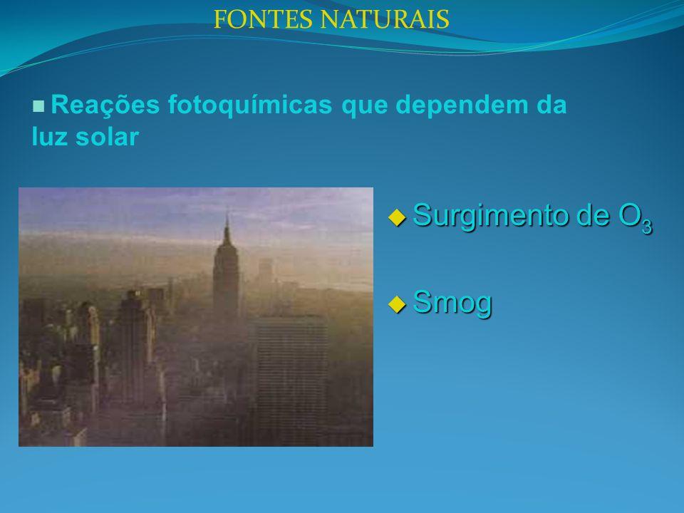 FONTES NATURAIS Reações fotoquímicas que dependem da luz solar Surgimento de O 3 Surgimento de O 3 Smog Smog