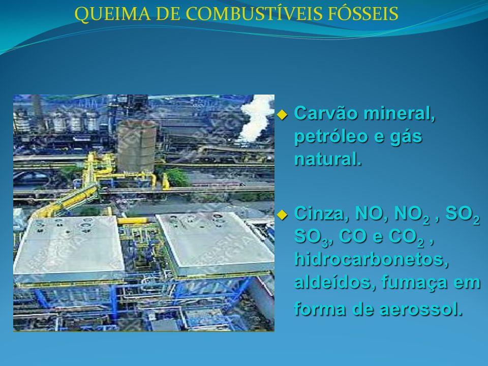 QUEIMA DE COMBUSTÍVEIS FÓSSEIS Carvão mineral, petróleo e gás natural. Carvão mineral, petróleo e gás natural. Cinza, NO, NO 2, SO 2 SO 3, CO e CO 2,