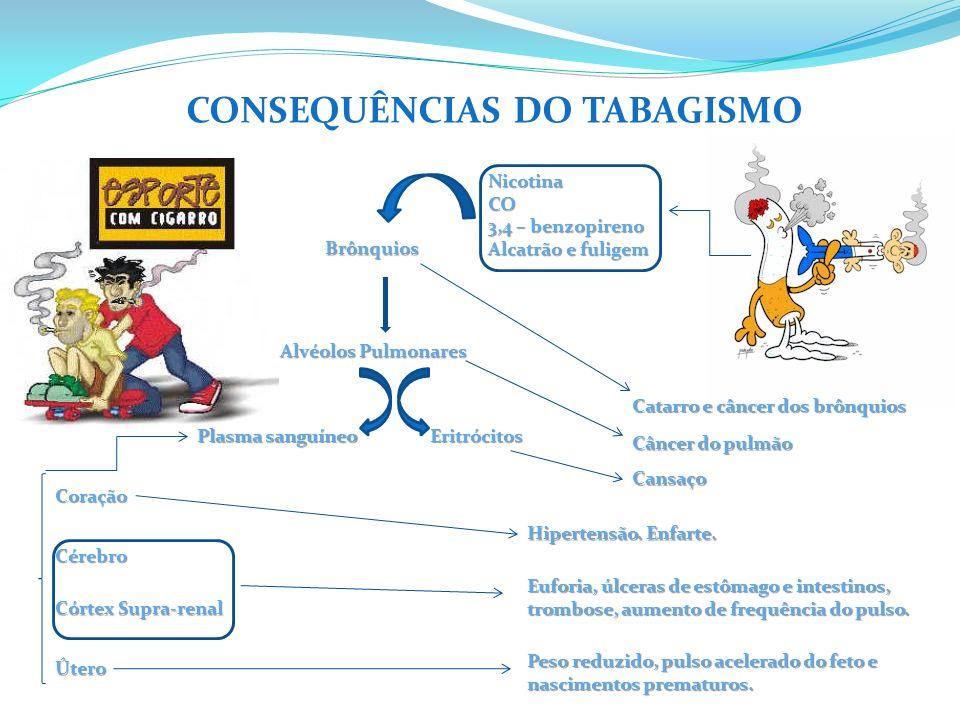 CONSEQUÊNCIAS DO TABAGISMO NicotinaCO 3,4 – benzopireno Alcatrão e fuligem Brônquios Catarro e câncer dos brônquios Alvéolos Pulmonares Câncer do pulmão Eritrócitos Plasma sanguíneo Cansaço Coração Cérebro Córtex Supra-renal Útero Hipertensão.