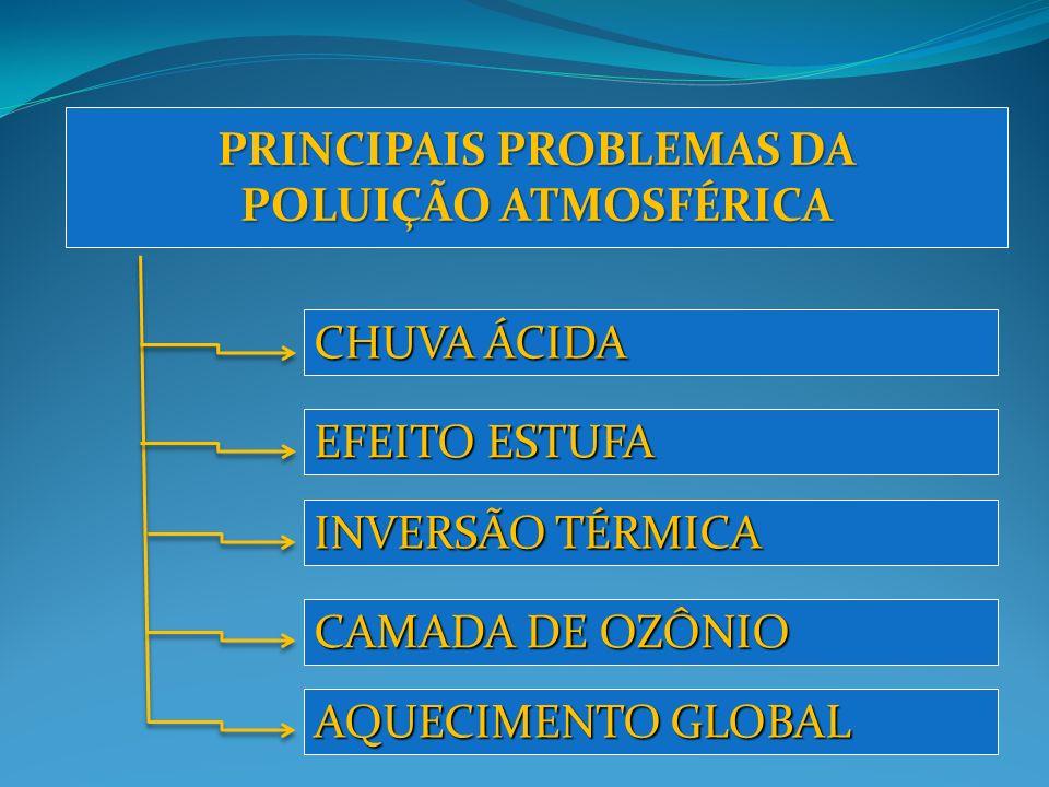 PRINCIPAIS PROBLEMAS DA POLUIÇÃO ATMOSFÉRICA CHUVA ÁCIDA EFEITO ESTUFA INVERSÃO TÉRMICA CAMADA DE OZÔNIO AQUECIMENTO GLOBAL