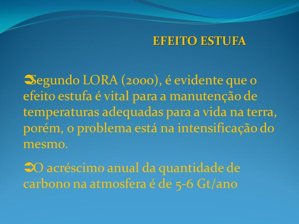 EFEITO ESTUFA Segundo LORA (2000), é evidente que o efeito estufa é vital para a manutenção de temperaturas adequadas para a vida na terra, porém, o problema está na intensificação do mesmo.