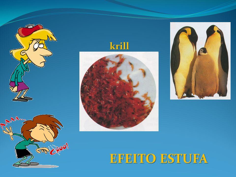 EFEITO ESTUFA krill